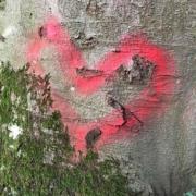 Bild von einem mit roter Farbe auf einen Baum gesprühtem Herz