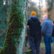 Bild von einer Gruppe von Menschen beim Waldbaden vor einem Baumstamm
