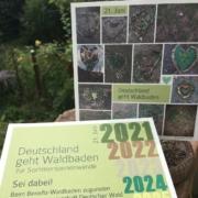 Deutschland geht WaldbadenWaldbaden zur Sommersonnenwende - deutschlandweite Benefizveranstaltung
